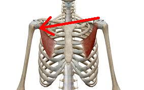 小胸筋症候群(過外転症候群)